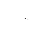 Honorary Mention, International documentary competition